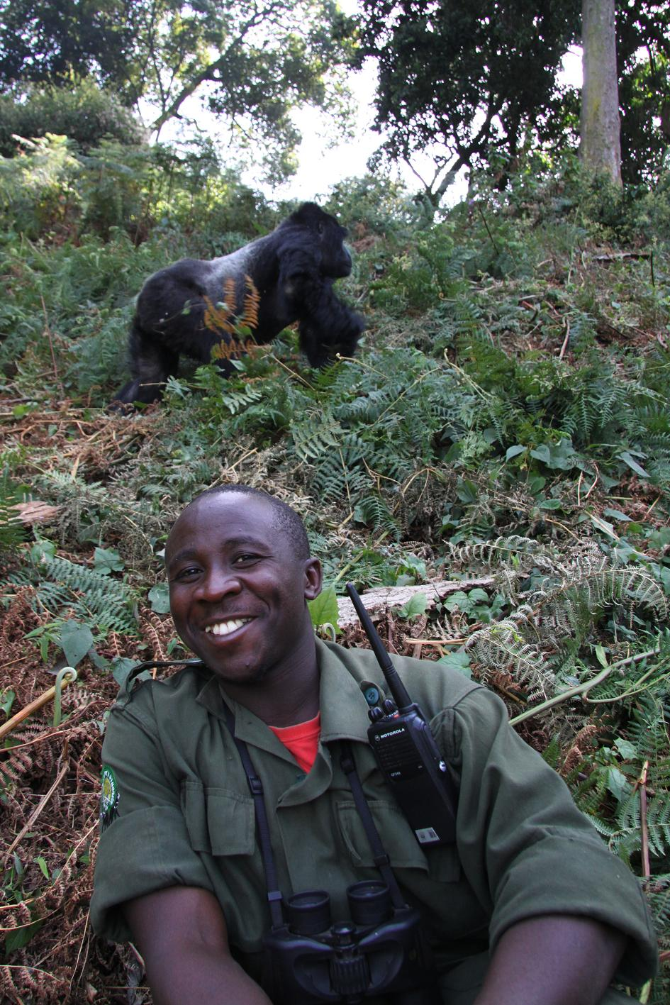 Gorilla Tracking - Guide Uganda (Bwindi Nationalpark)